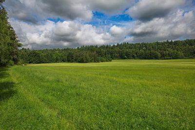 Zwischen Kirnberg - und Unteroestheim