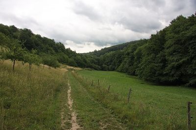 Steyerbachtal