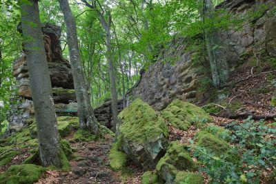 Felsenweg 6
