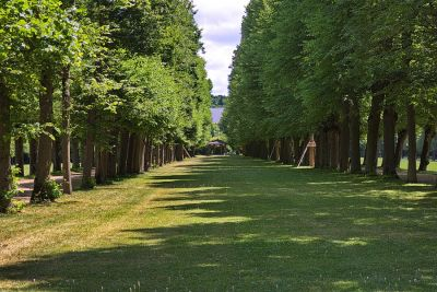 Der Residenzgarten
