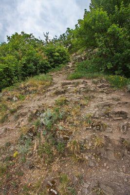 Abstieg vom Calmont
