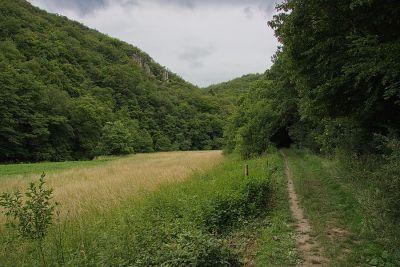 Im Tal der Schmidtburg
